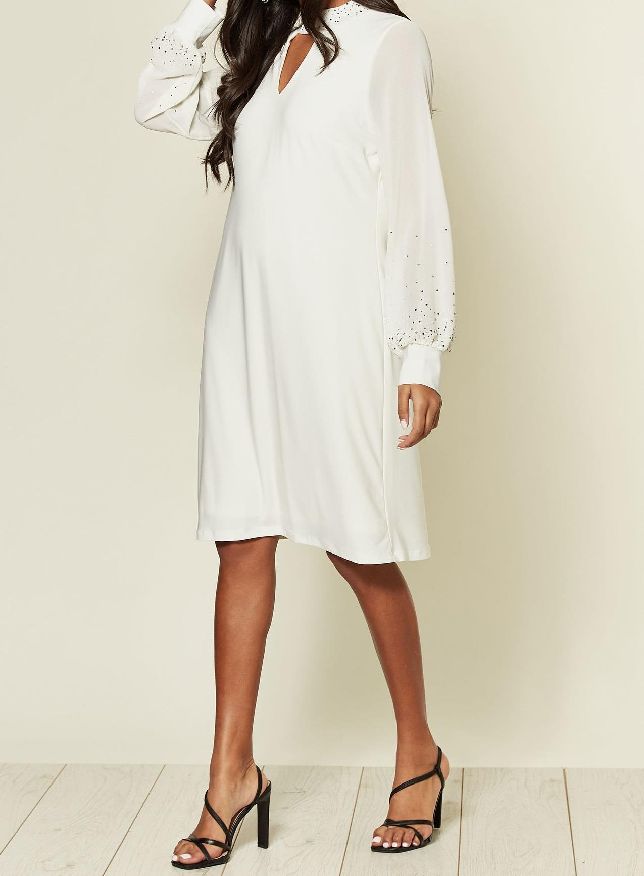 Anastasia Chiffon Embellished Lined Dress