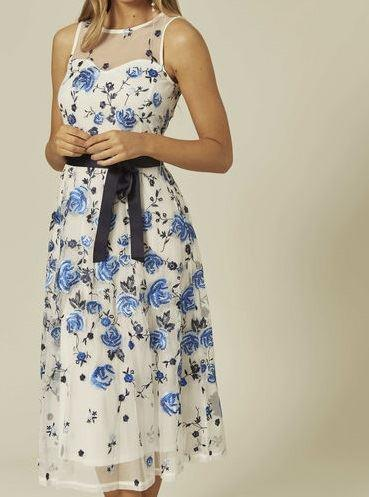 Anastasia Blue Embroidered Lined Party Dress
